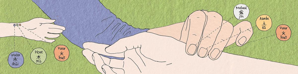 Acapunctuur-beweegt-Polsdiagnoze.png